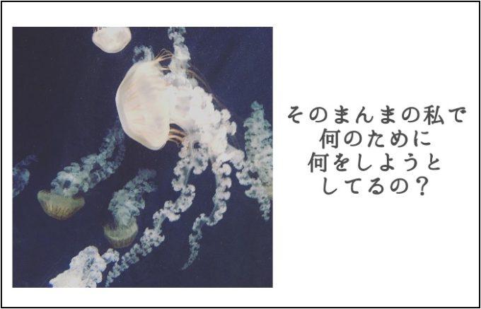 江ノ島水族館のクラゲの写真とブログタイトル